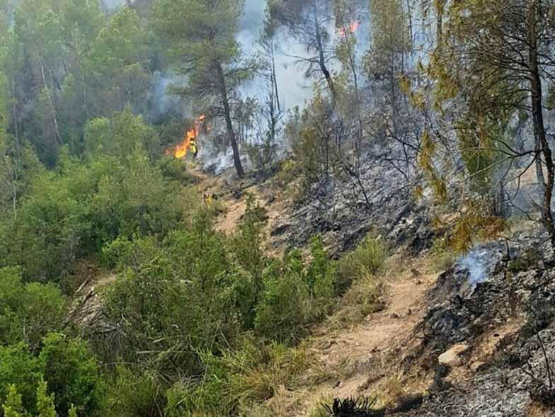 incendio forestal en paracuellos de la vega